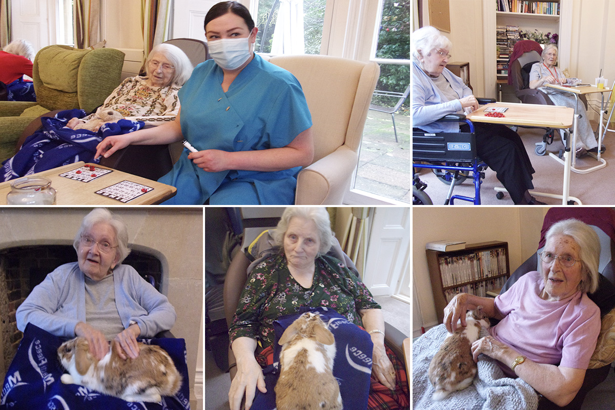 Loose Valley Care Home residents enjoy Bingo and bunny cuddles