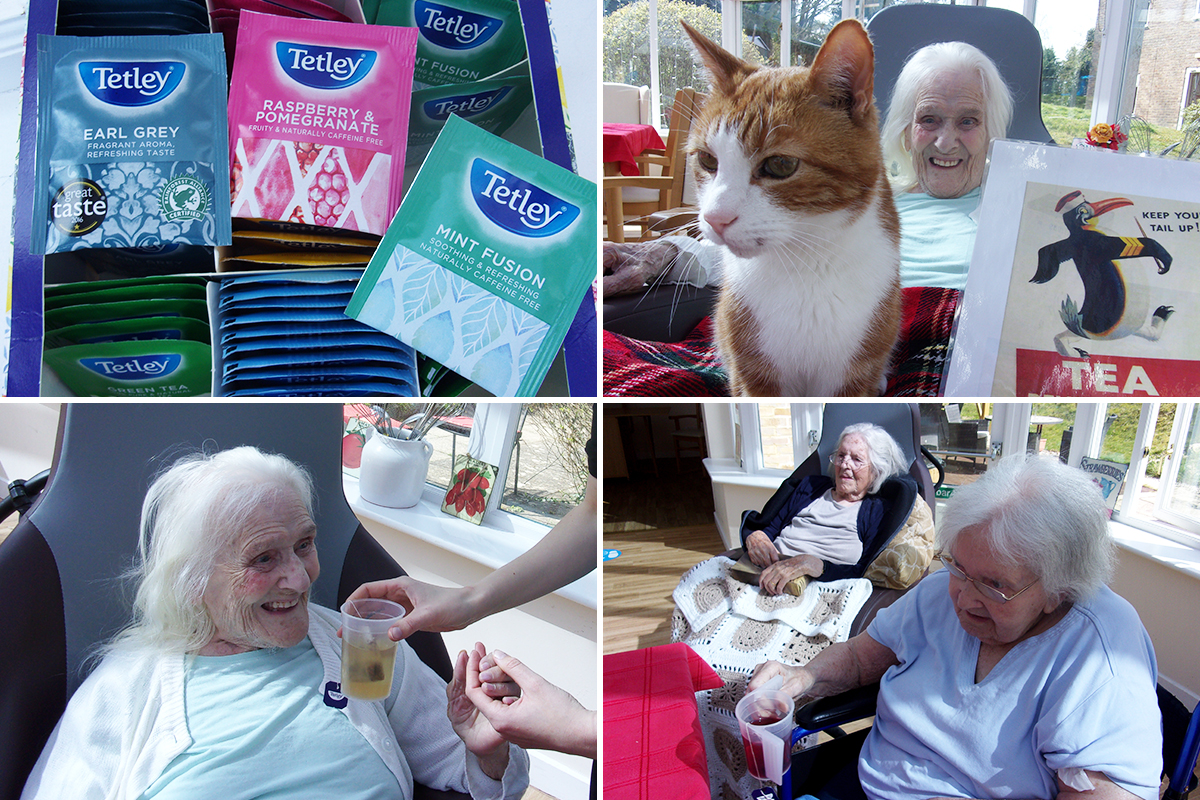 Loose Valley Care Home residents reminisce over tea tasting
