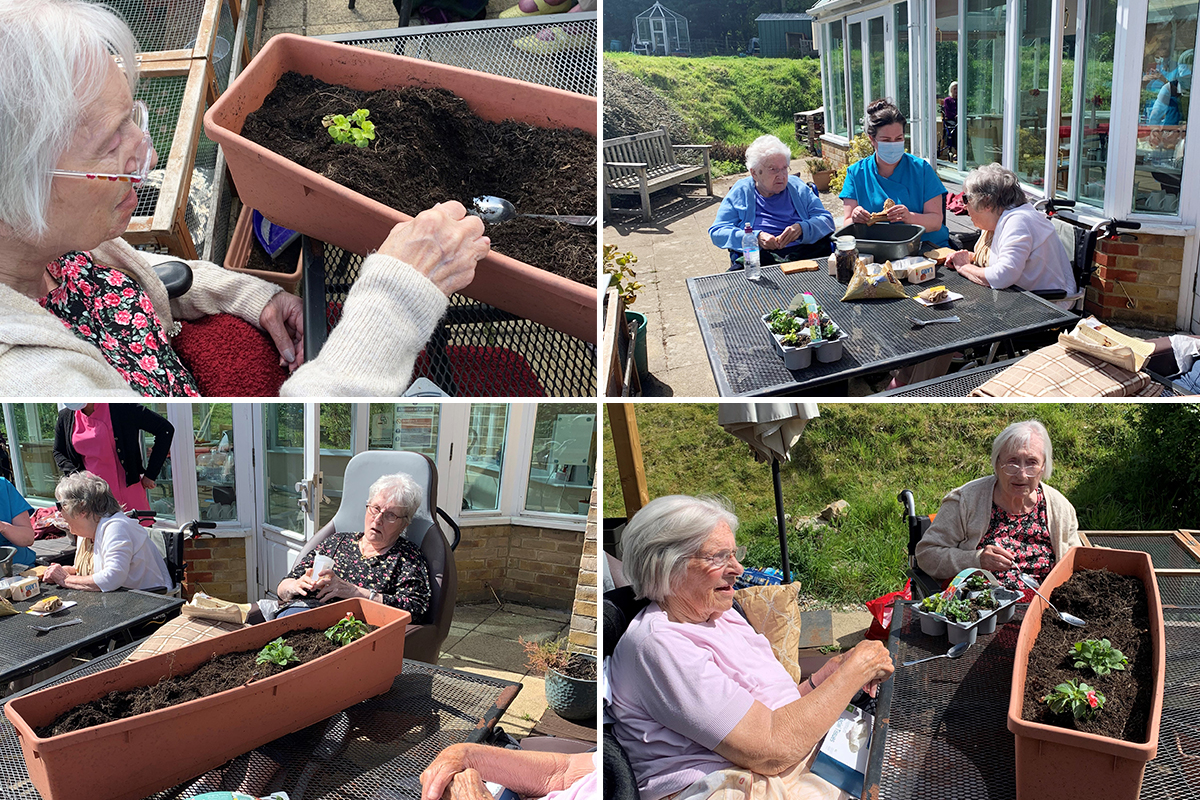 Gardening Club is a success at Loose Valley Care Home